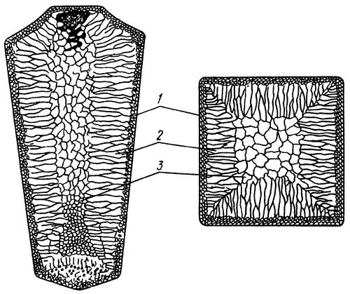 Схема строения стального